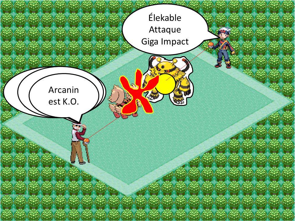 Arcanin Attaque Vitesse Extrême Élekable Attaque Boule Élek Arcanin Attaque Déflagration Élekable Attaque Giga Impact Arcanin est K.O.