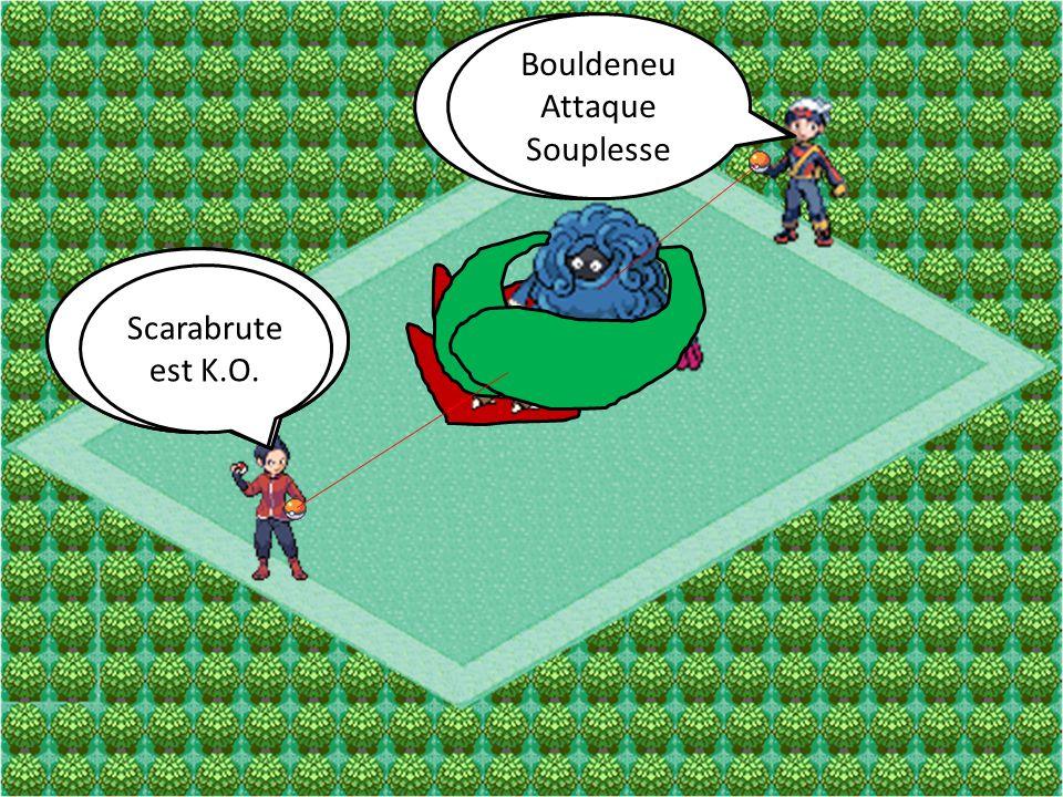Bouldeneu Attaque Mega-Sangsue Scarabrute Attaque Piqure Bouldeneu Attaque Souplesse Scarabrute Attaque Surpuissance Scarabrute est K.O.