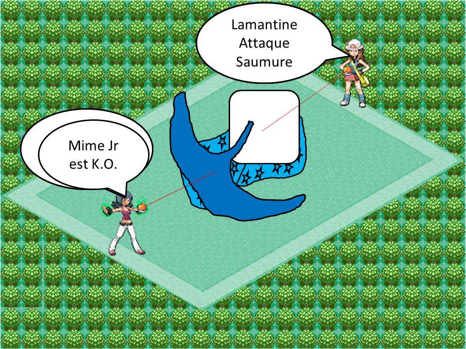 Mime Jr Attaque Copie Otaria Attaque Vent Glace Mime Jr Attaque Clonage Otaria a évoluer en Lamantine Lamantine Attaque Saumure Mime Jr est K.O.