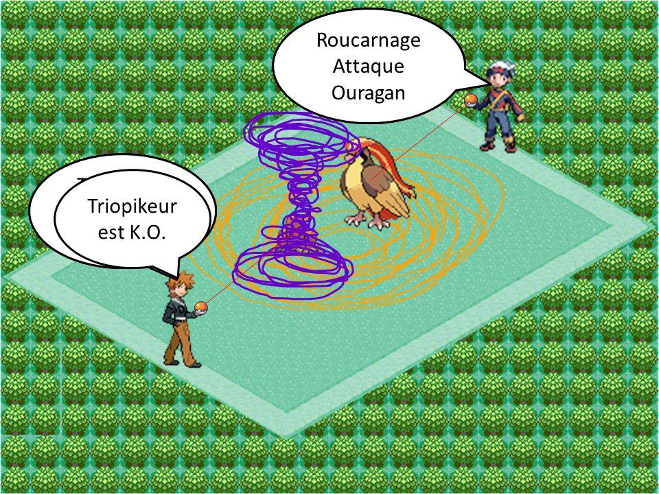 Roucarnage Attaque Vive-Attaque Triopikeur Attaque Tunnel Roucarnage Attaque Ouragan Triopikeur Attaque Tourbi-Sable Triopikeur est K.O.