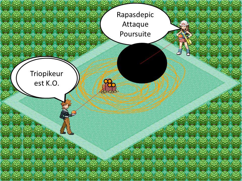 Rapasdepic Attaque Furie Triopikeur Attaque Tourbi-Sable Rapasdepic Attaque Poursuite Triopikeur Attaque Boue-Bombe Triopikeur est K.O.