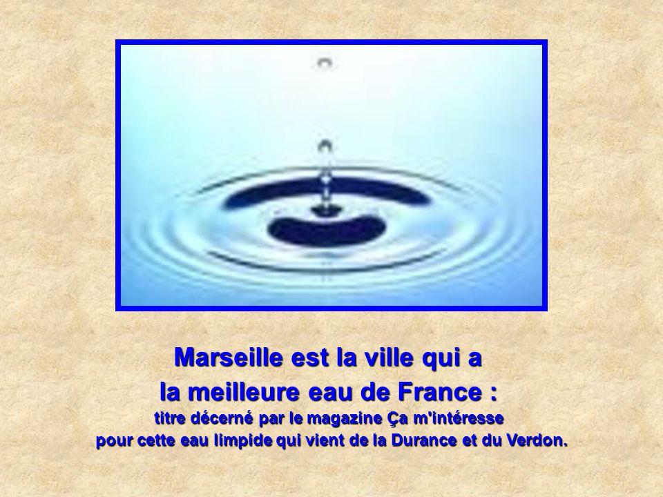 Marseille est la ville qui a la carte des vins la plus cotée : C'est à la Côte de Bœuf : Les crus de la région sont même entrés au Guinness book !
