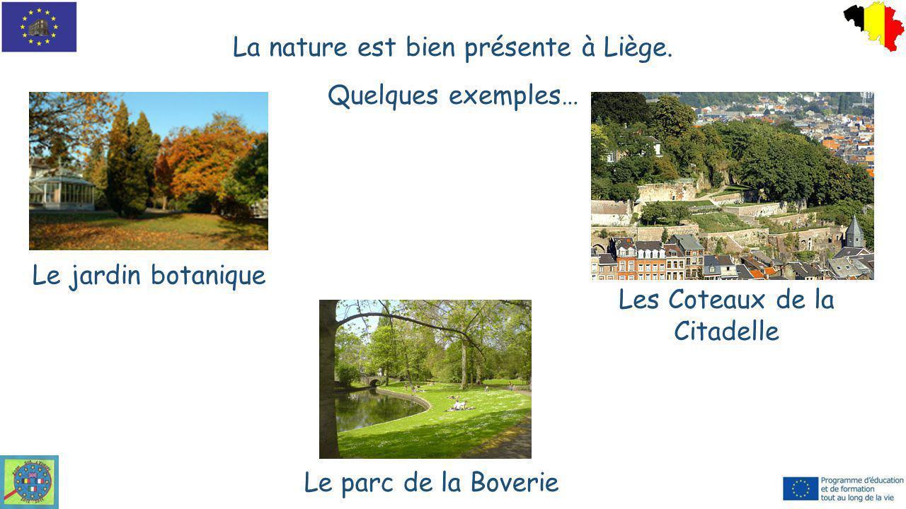 La nature est bien présente à Liège. Quelques exemples… Le jardin botanique Le parc de la Boverie Les Coteaux de la Citadelle