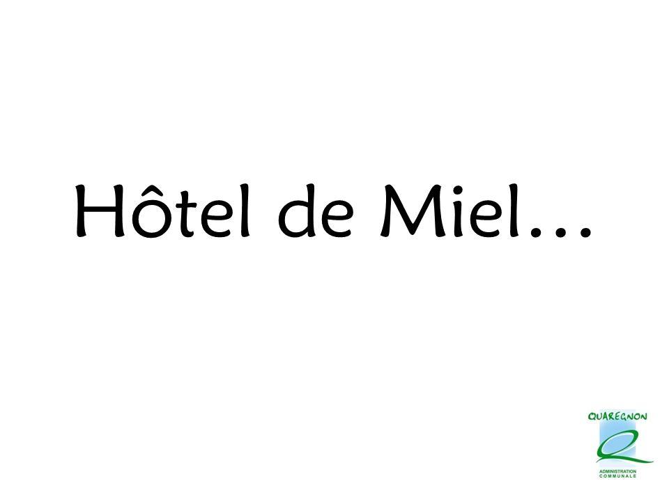 Hôtel de Miel…