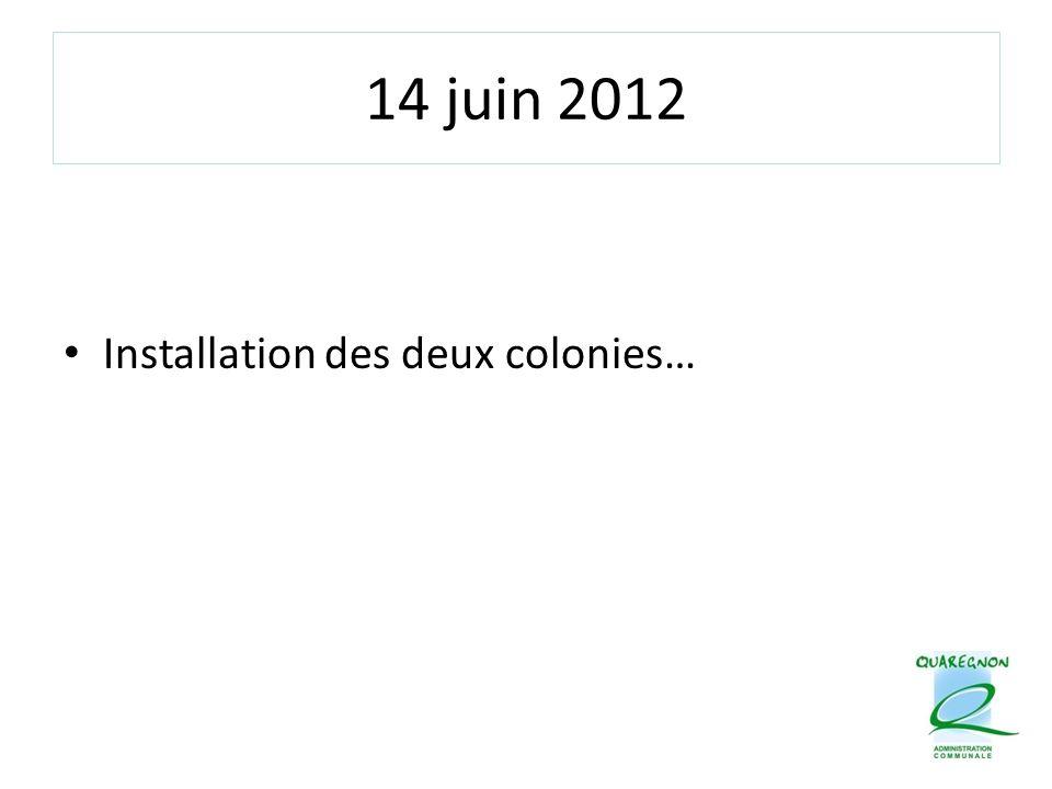 14 juin 2012 Installation des deux colonies…