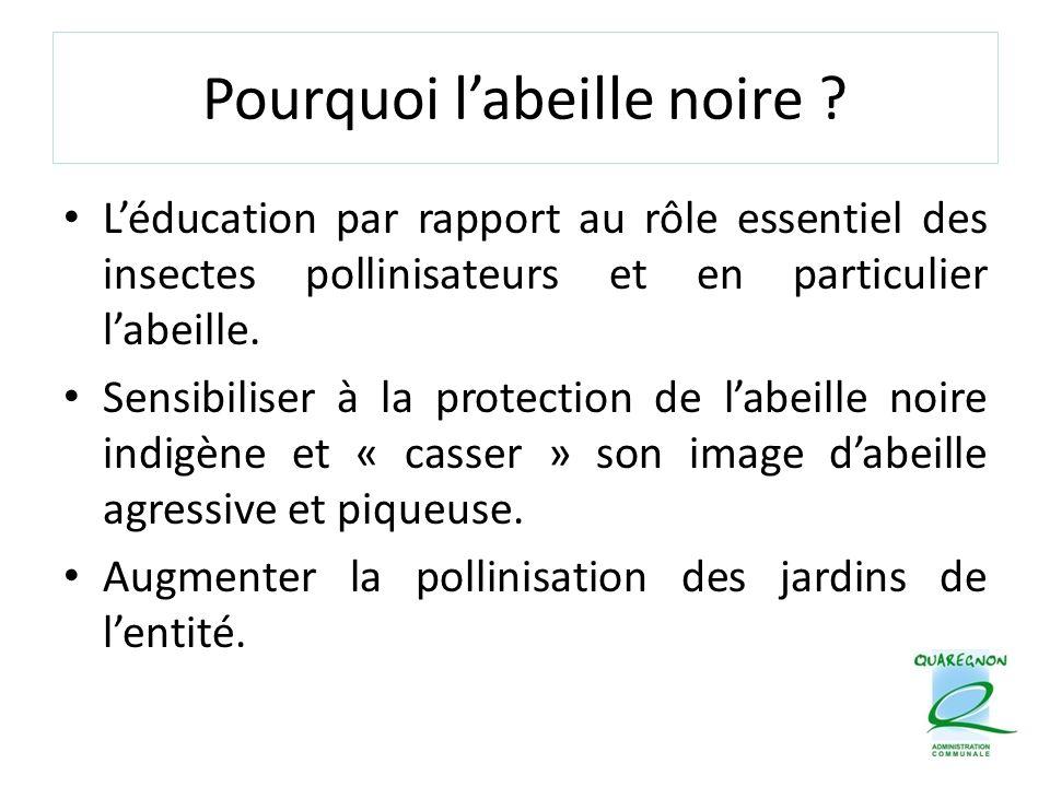 Pourquoi l'abeille noire ? L'éducation par rapport au rôle essentiel des insectes pollinisateurs et en particulier l'abeille. Sensibiliser à la protec