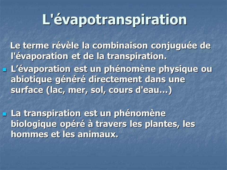 L'évapotranspiration Le terme révèle la combinaison conjuguée de l'évaporation et de la transpiration. Le terme révèle la combinaison conjuguée de l'é