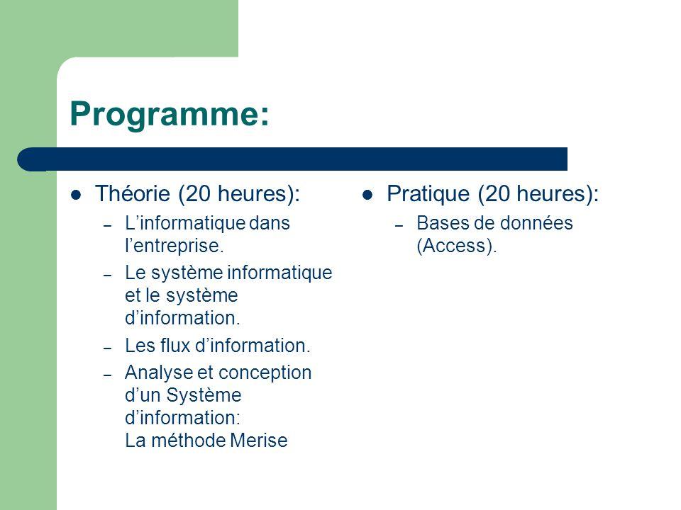 Programme: Théorie (20 heures): – L'informatique dans l'entreprise.