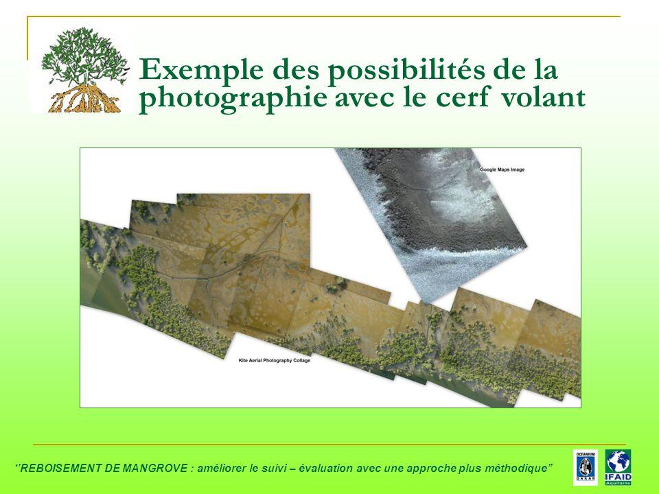 Exemple des possibilités de la photographie avec le cerf volant ''REBOISEMENT DE MANGROVE : améliorer le suivi – évaluation avec une approche plus mét