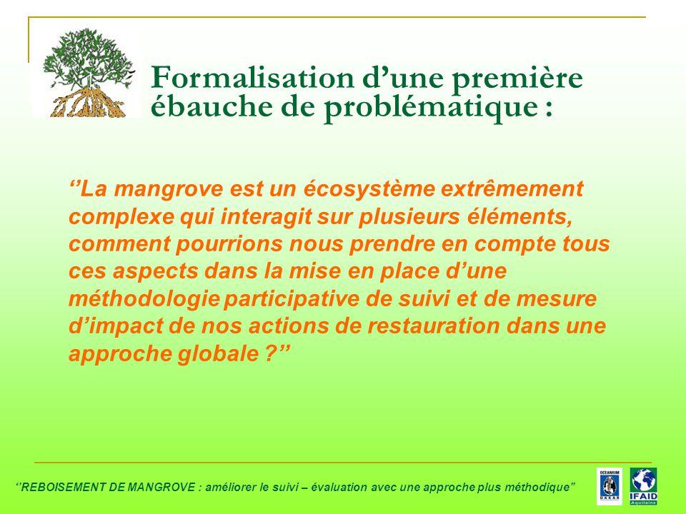 Formalisation d'une première ébauche de problématique : ''La mangrove est un écosystème extrêmement complexe qui interagit sur plusieurs éléments, com