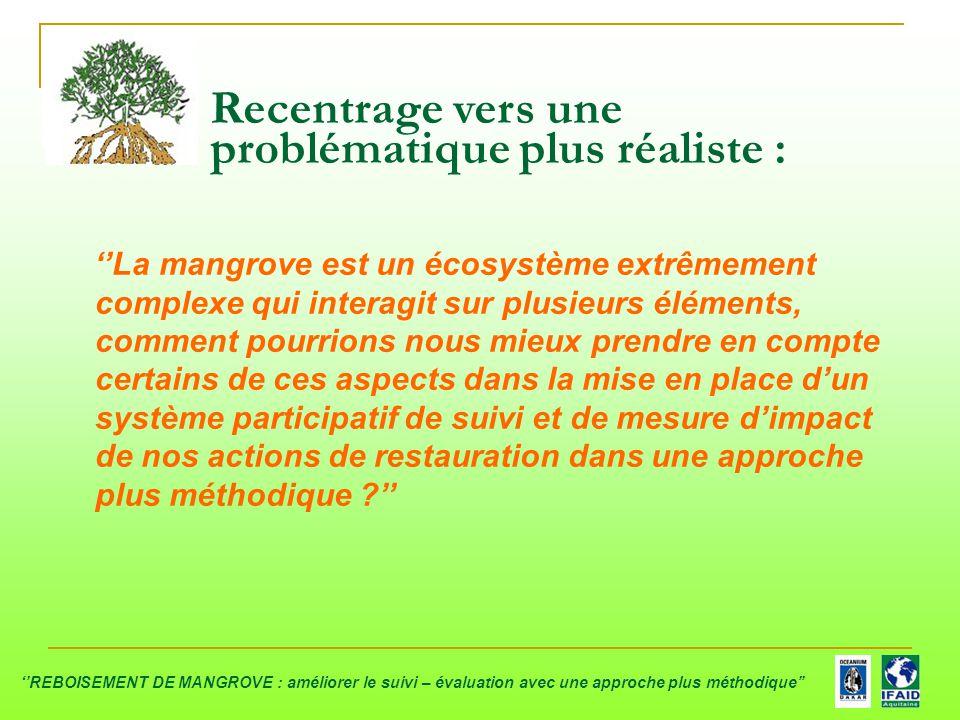 Recentrage vers une problématique plus réaliste : ''La mangrove est un écosystème extrêmement complexe qui interagit sur plusieurs éléments, comment p