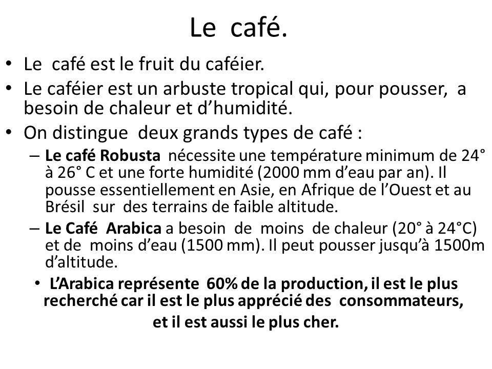 Le café. Le café est le fruit du caféier. Le caféier est un arbuste tropical qui, pour pousser, a besoin de chaleur et d'humidité. On distingue deux g