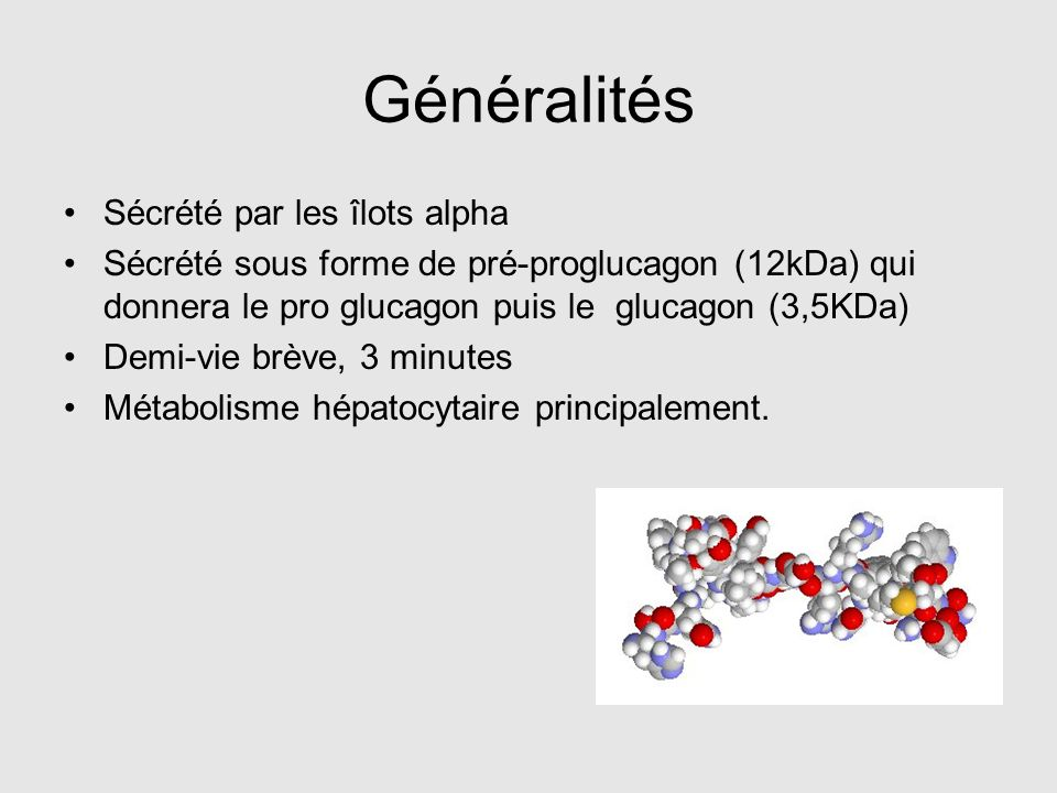 Généralités Sécrété par les îlots alpha Sécrété sous forme de pré-proglucagon (12kDa) qui donnera le pro glucagon puis le glucagon (3,5KDa) Demi-vie b