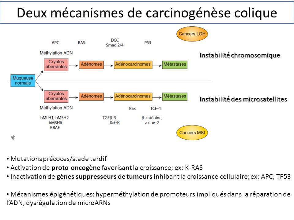 Deux mécanismes de carcinogénèse colique Mutations précoces/stade tardif Activation de proto-oncogène favorisant la croissance; ex: K-RAS Inactivation