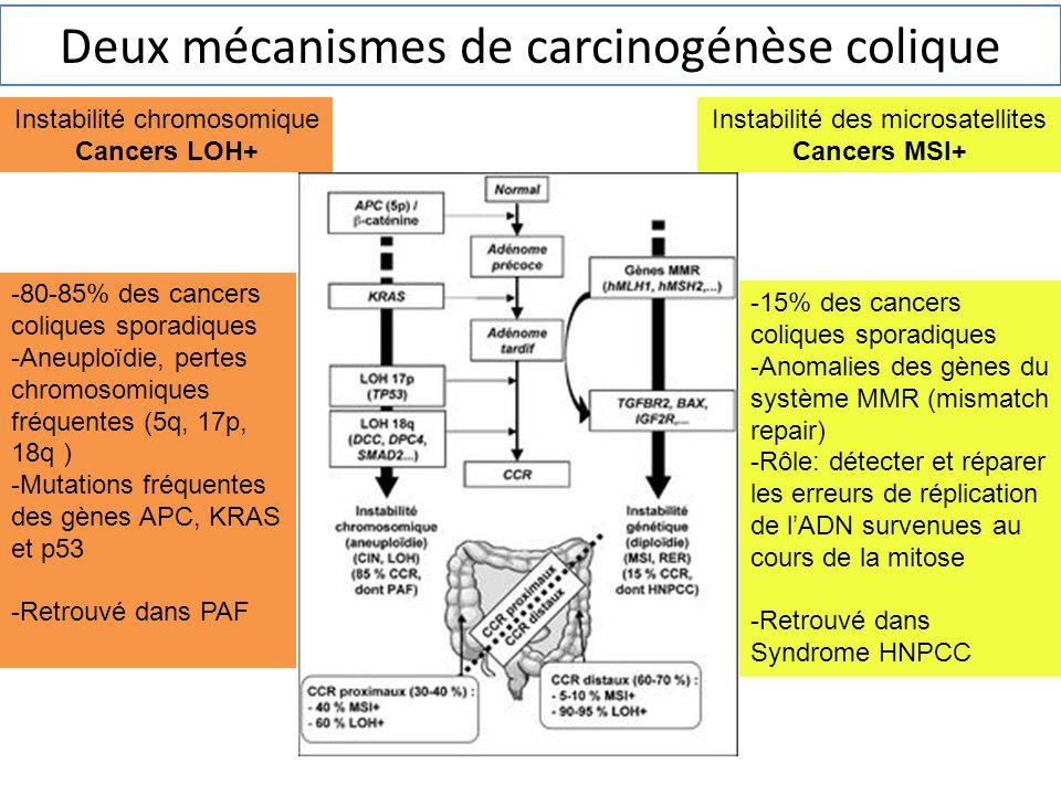 Instabilité chromosomique Cancers LOH+ Instabilité des microsatellites Cancers MSI+ -80-85% des cancers coliques sporadiques -Aneuploïdie, pertes chro