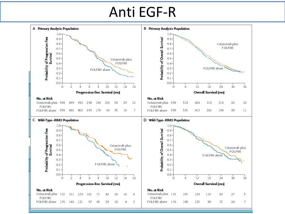 Anti EGF-R