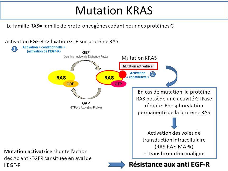 En cas de mutation, la protéine RAS possède une activité GTPase réduite: Phosphorylation permanente de la protéine RAS Activation des voies de transdu