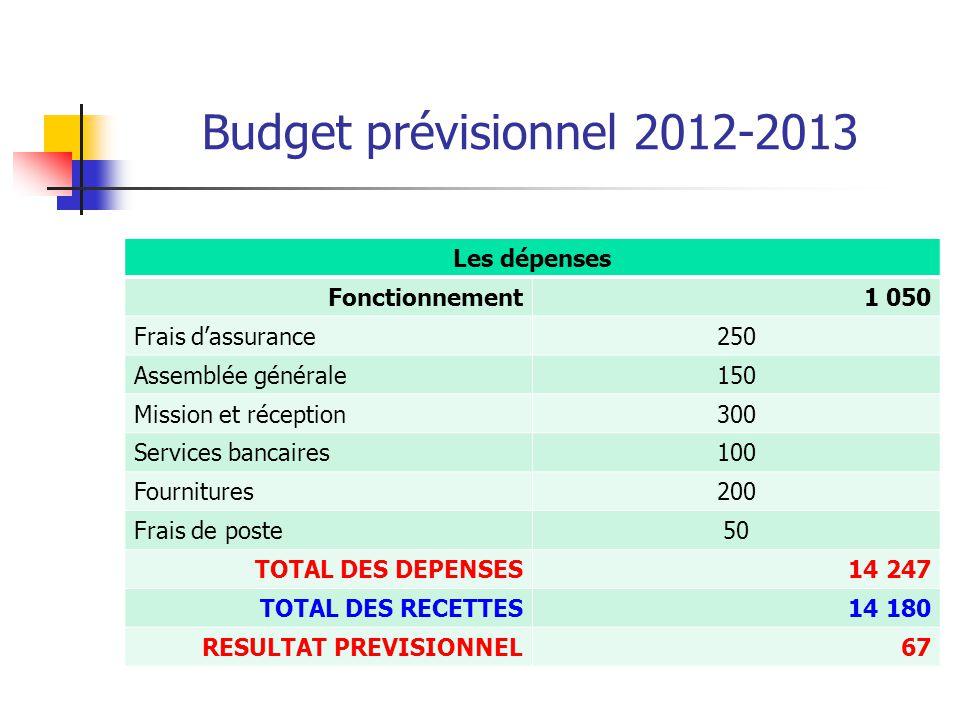 Budget prévisionnel 2012-2013 Les dépenses Fonctionnement1 050 Frais d'assurance250 Assemblée générale150 Mission et réception300 Services bancaires10