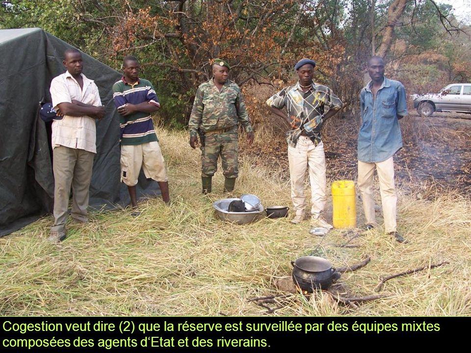 Cogestion veut dire (2) que la réserve est surveillée par des équipes mixtes composées des agents d'Etat et des riverains.