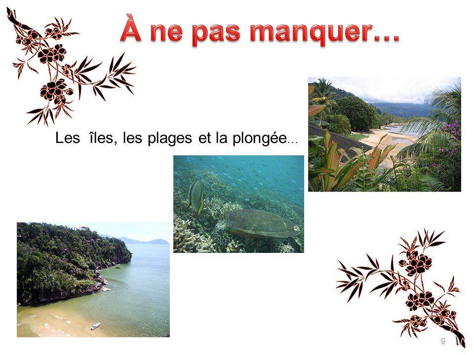 9 Les îles, les plages et la plongée...