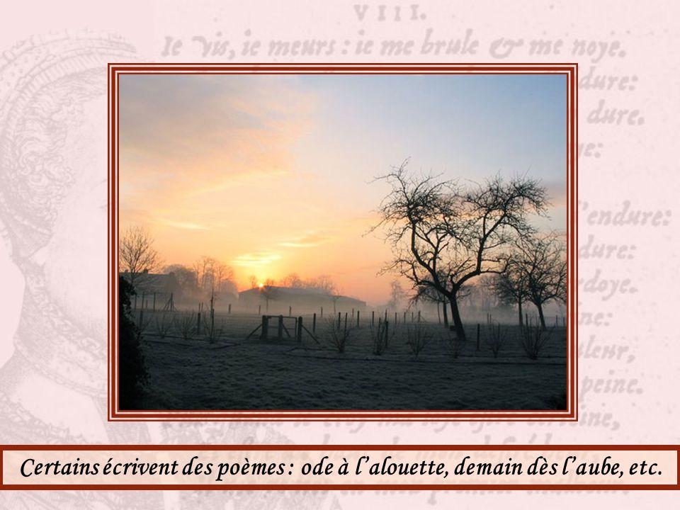 Suis-je ré-mu-né-rée pour observer les levers de soleil sur le miroir de la Saône ? Dommage. Il y a de quoi rêver.
