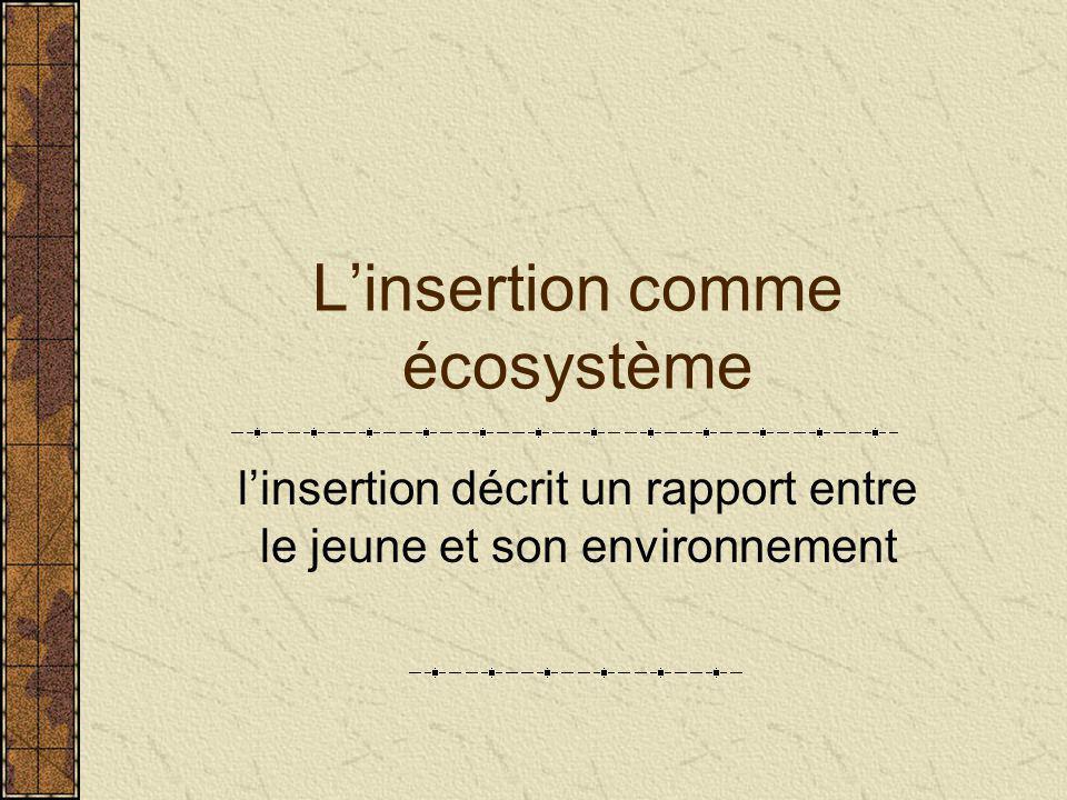 L'insertion comme écosystème l'insertion décrit un rapport entre le jeune et son environnement