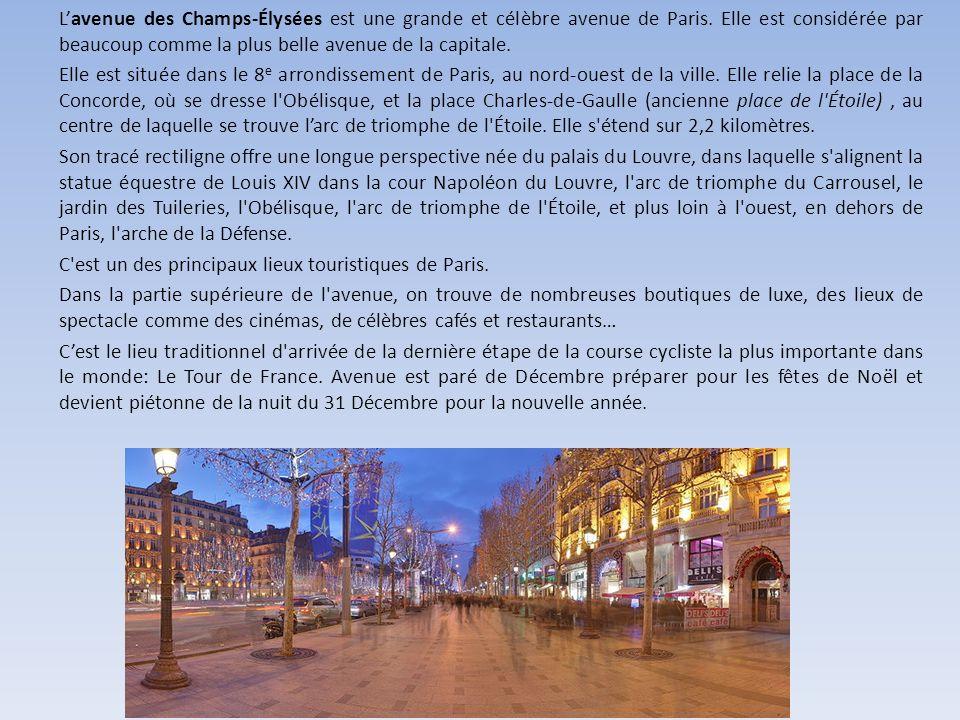 L'avenue des Champs-Élysées est une grande et célèbre avenue de Paris.