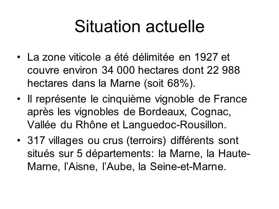 Situation actuelle La zone viticole a été délimitée en 1927 et couvre environ 34 000 hectares dont 22 988 hectares dans la Marne (soit 68%). Il représ