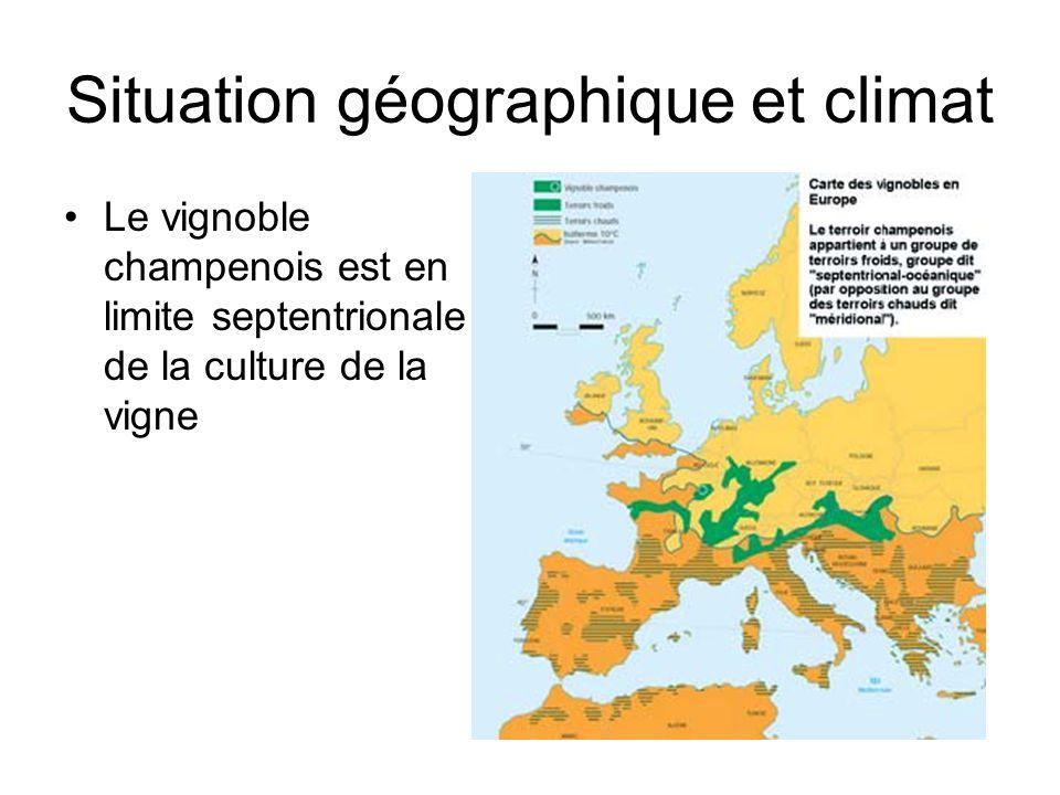 Situation géographique et climat Le vignoble champenois est en limite septentrionale de la culture de la vigne