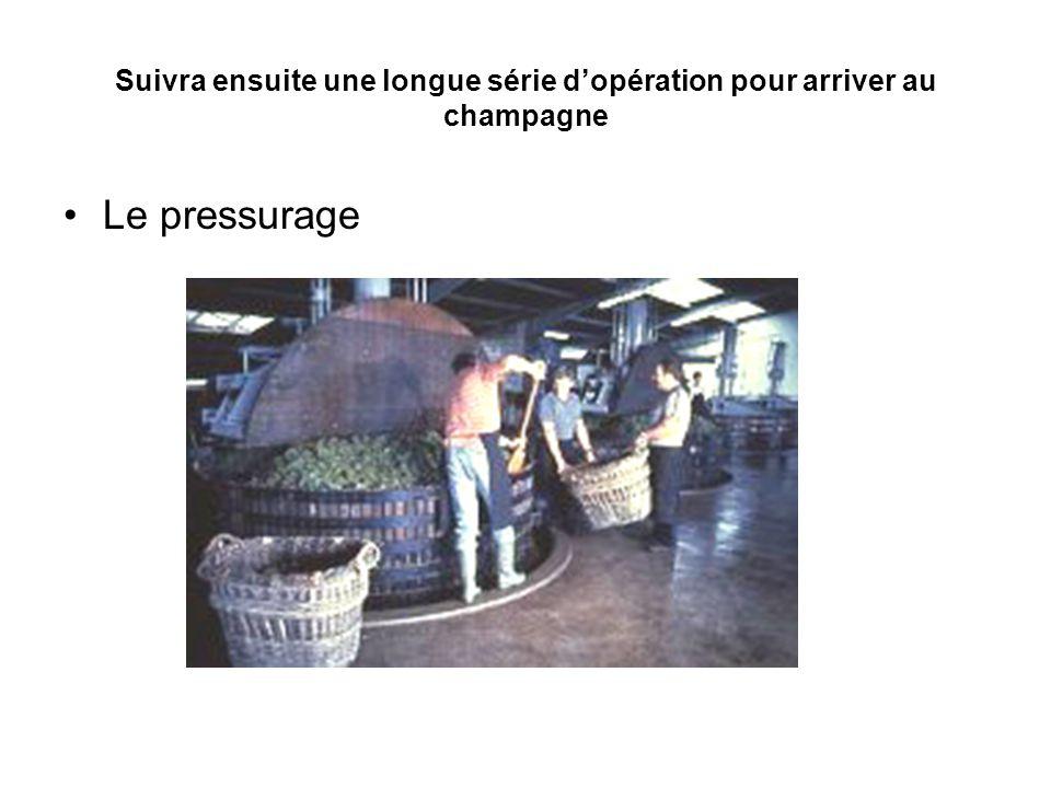 Suivra ensuite une longue série d'opération pour arriver au champagne Le pressurage