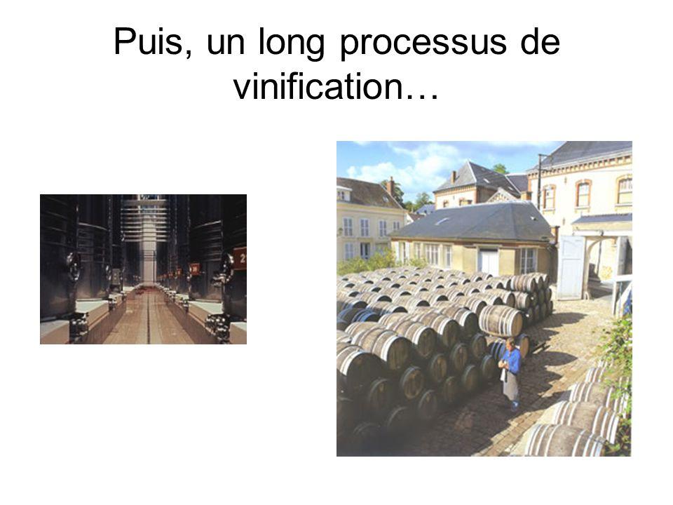 Puis, un long processus de vinification…