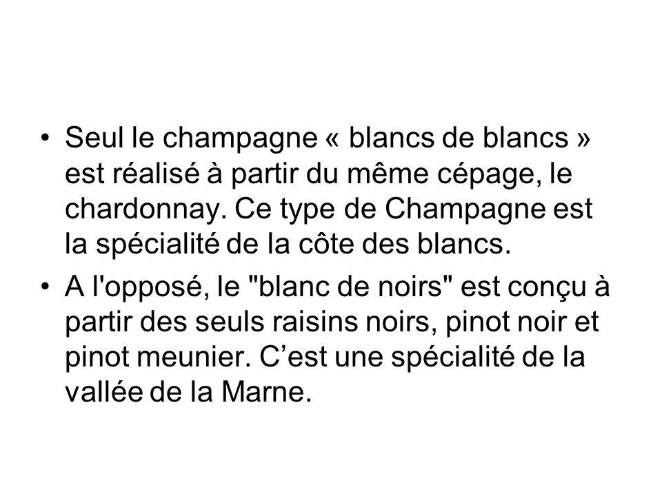 Seul le champagne « blancs de blancs » est réalisé à partir du même cépage, le chardonnay. Ce type de Champagne est la spécialité de la côte des blanc