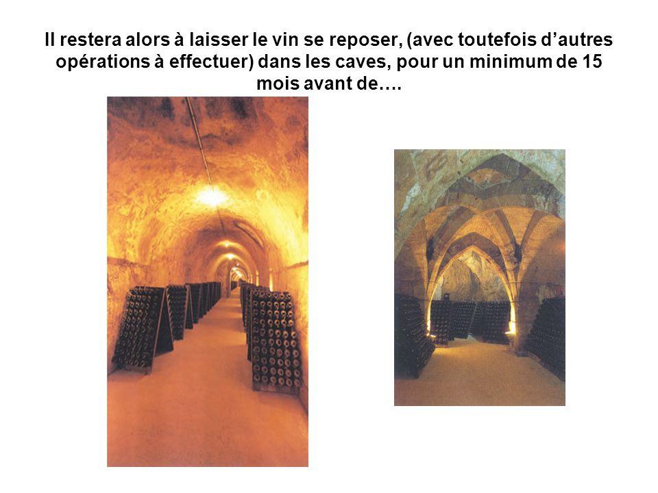 Il restera alors à laisser le vin se reposer, (avec toutefois d'autres opérations à effectuer) dans les caves, pour un minimum de 15 mois avant de….