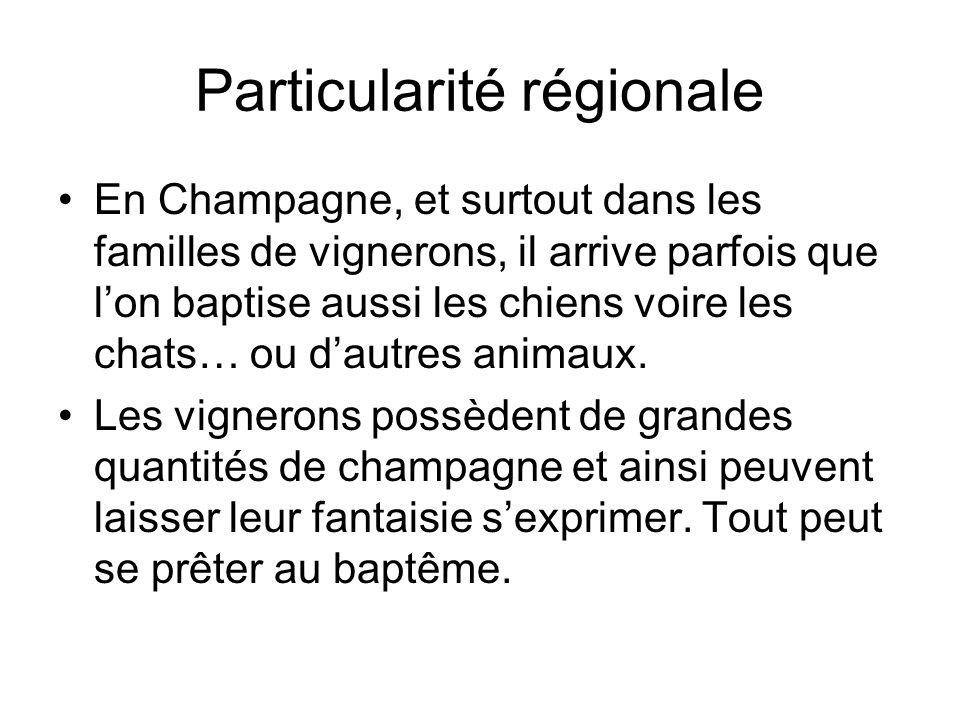 Particularité régionale En Champagne, et surtout dans les familles de vignerons, il arrive parfois que l'on baptise aussi les chiens voire les chats…