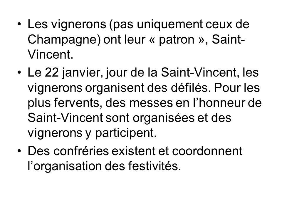 Les vignerons (pas uniquement ceux de Champagne) ont leur « patron », Saint- Vincent. Le 22 janvier, jour de la Saint-Vincent, les vignerons organisen
