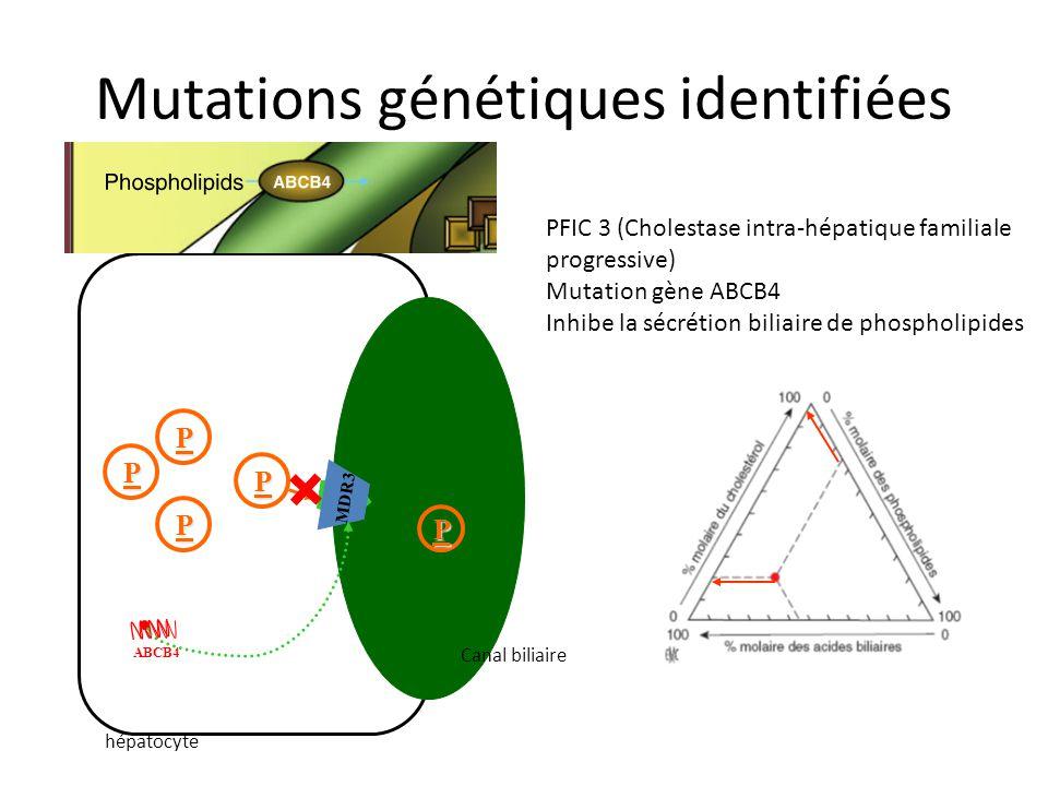 Mutations génétiques identifiées PFIC 3 (Cholestase intra-hépatique familiale progressive) Mutation gène ABCB4 Inhibe la sécrétion biliaire de phospho