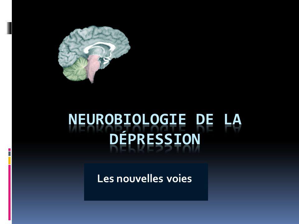 Au cours de ces dernières années des idées nouvelles sur le fonctionnement cérébral ont vu le jour.