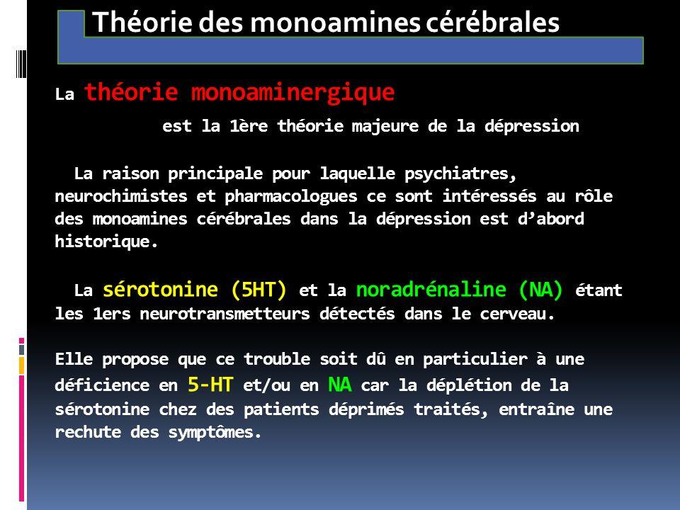 La théorie monoaminergique est la 1ère théorie majeure de la dépression La raison principale pour laquelle psychiatres, neurochimistes et pharmacologu
