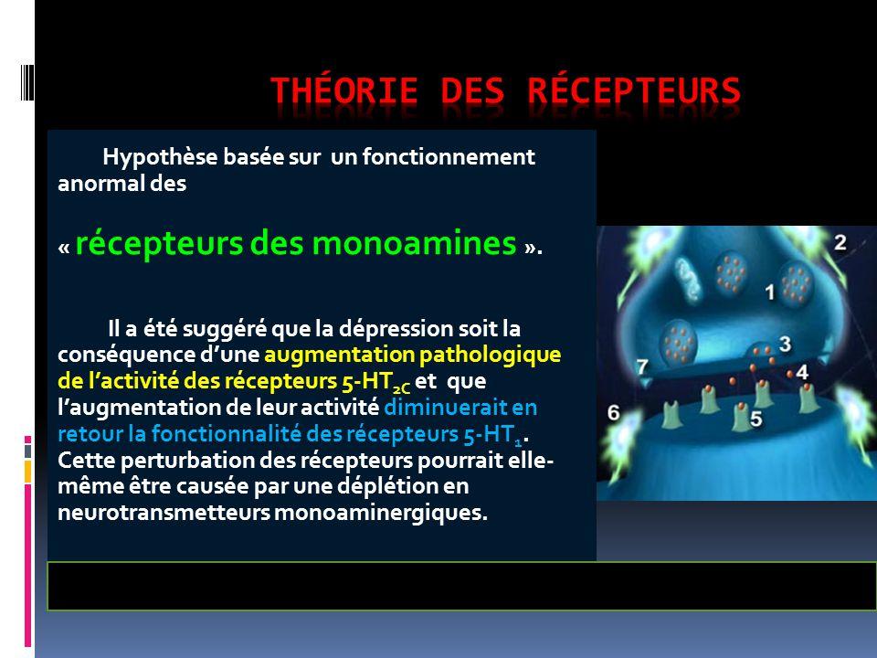 Hypothèse basée sur un fonctionnement anormal des « récepteurs des monoamines ». Il a été suggéré que la dépression soit la conséquence d'une augmenta
