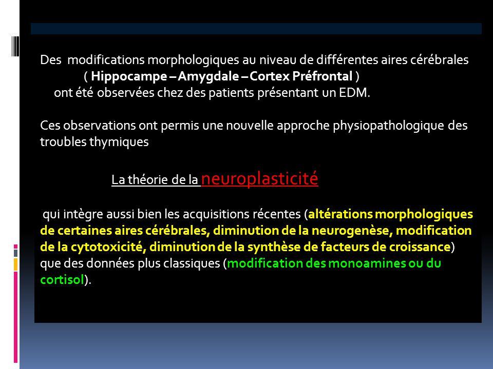 Des modifications morphologiques au niveau de différentes aires cérébrales ( Hippocampe – Amygdale – Cortex Préfrontal ) ont été observées chez des pa
