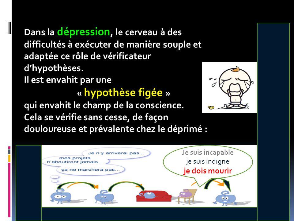 Je tiens à émettre une remarque : la dépression est une affection chronique ( au moins une ou deux récidives) Les suspects habituels en dehors des * monoamines cérébrales : - 5HT (parait la plus incriminée) - NA, DA, Gaba, Glutamate * Les régions cérébrales - Cortex Préfrontal (CPFDL, CPFM, CPFOV) - Système limbique (hippocampe, amygdale, cortex cingulaire antérieur) Structures cérébrales impliquées dans la dépression Modifications structurales et f(x)elles, rôle dans la symptomatologie dépressive