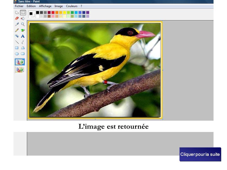 Choisissons retourner horizontalement puis clic sur OK Il est aussi possible de retourner l'image verticalement ou de la faire pivoter avec un angle d