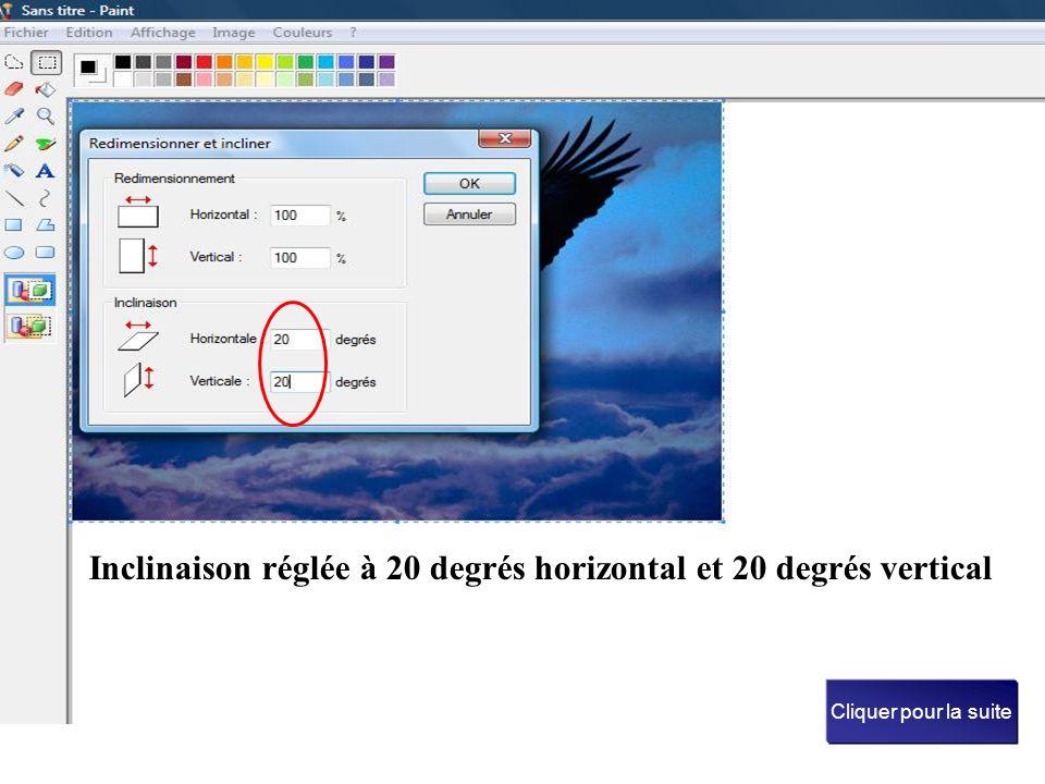 Inclinaison réglée à 20 degrés horizontal et 20 degrés vertical Cliquer pour la suite