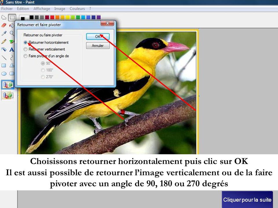 Choisissons retourner horizontalement puis clic sur OK Il est aussi possible de retourner l'image verticalement ou de la faire pivoter avec un angle de 90, 180 ou 270 degrés Cliquer pour la suite