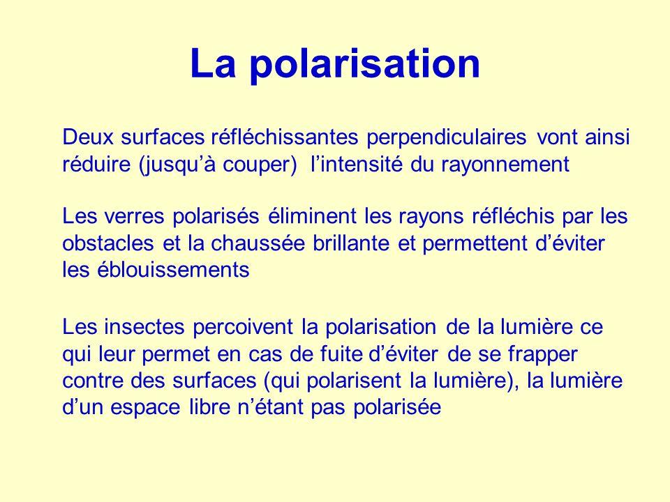 La polarisation Les insectes percoivent la polarisation de la lumière ce qui leur permet en cas de fuite d'éviter de se frapper contre des surfaces (q
