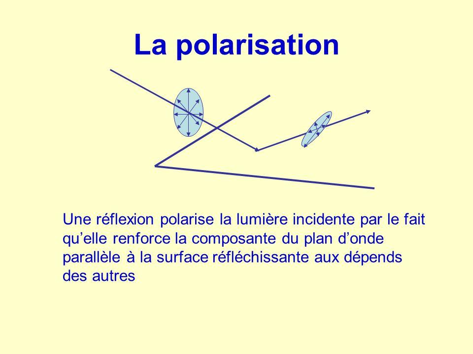 La polarisation Les insectes percoivent la polarisation de la lumière ce qui leur permet en cas de fuite d'éviter de se frapper contre des surfaces (qui polarisent la lumière), la lumière d'un espace libre n'étant pas polarisée Les verres polarisés éliminent les rayons réfléchis par les obstacles et la chaussée brillante et permettent d'éviter les éblouissements Deux surfaces réfléchissantes perpendiculaires vont ainsi réduire (jusqu'à couper) l'intensité du rayonnement