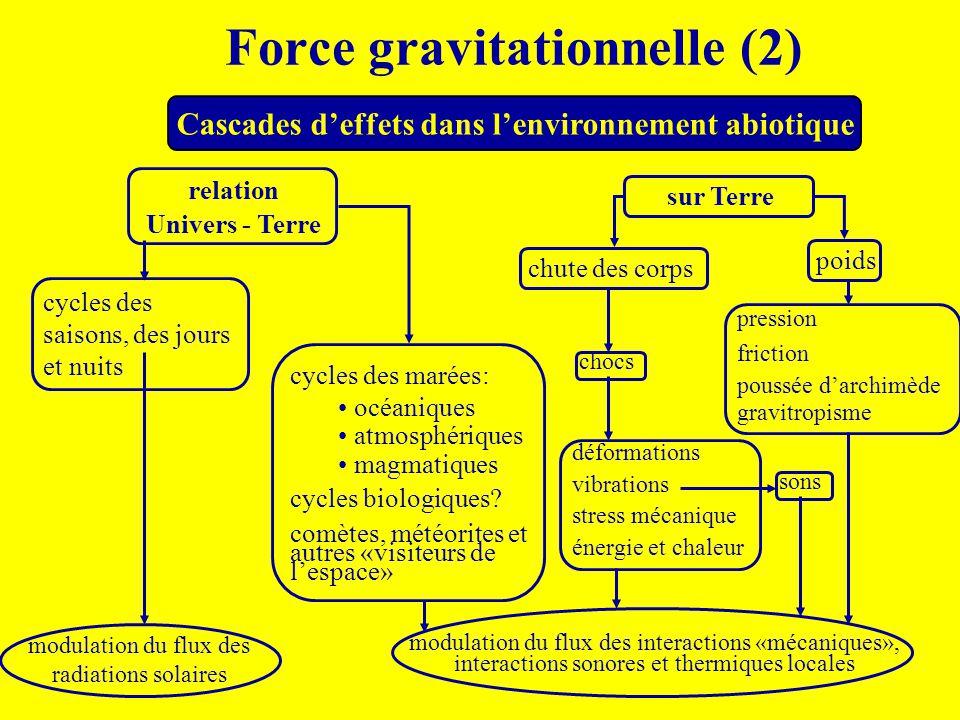 Force gravitationnelle (2) Cascades d'effets dans l'environnement abiotique relation Univers - Terre sur Terre cycles des saisons, des jours et nuits