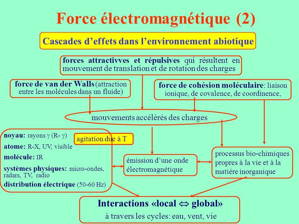 Force électromagnétique (2) Cascades d'effets dans l'environnement abiotique force de van der Walls (attraction entre les molécules dans un fluide) fo