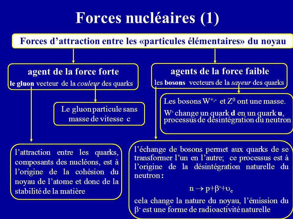 Forces nucléaires (1) Forces d'attraction entre les «particules élémentaires» du noyau agent de la force forte le gluon vecteur de la couleur des quar