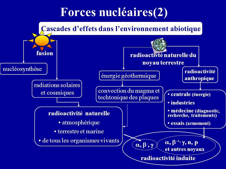 Force électromagnétique (1) Force d'attraction ou de répulsion entre les charges agent de la force: le photon particule sans masse de vitesse c entre deux charges F E = k (q 1 q 2 / d 1,2 ²) sur Terre, force à l'origine des édifices atomique et moléculaire et de leurs intéractions: l'origine de la vie sur une charge en mouvement F M = q v ^ B force exercée par un champ électrique E force exercée par un champ magnétique B  + +  + q 1  - q 2 F E = q.